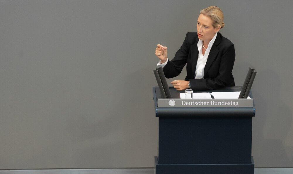 Die AfD und die Börse